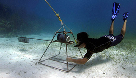 Researcher prepares a BRUV for shark research