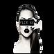 flix4k logo .png