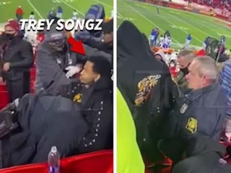 VIDEO OF TREY SONGZ CHOKING OUT A POLICE OFFICER AT THE CHIEFS VS BILLS GAME