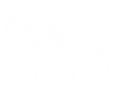 SN Logo white and clear-01.png