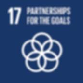 E_SDG-goals_Goal-17.png