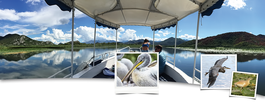 Individual boat trips at lake skadar