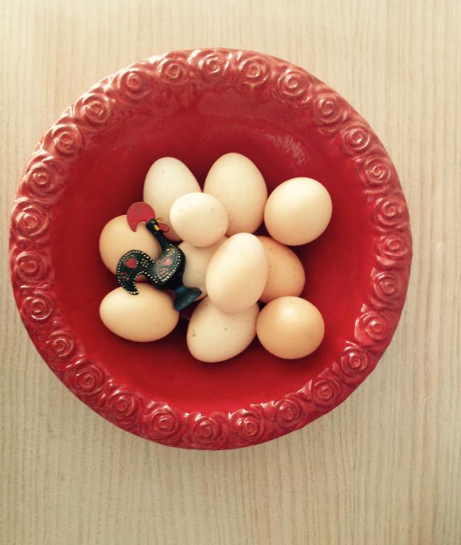 Ovos: Como escolher os melhores?