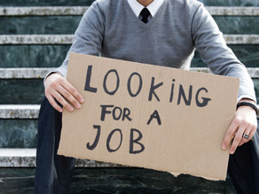 Jobless: 8 Ideas for Your Next Step