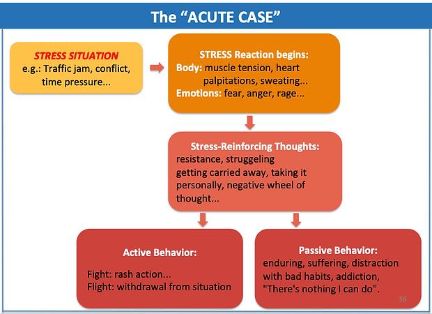 Acute case E.png
