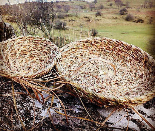 Coiled Molinea grass basket examples underway in preparation for courses this year! #basketry #coile