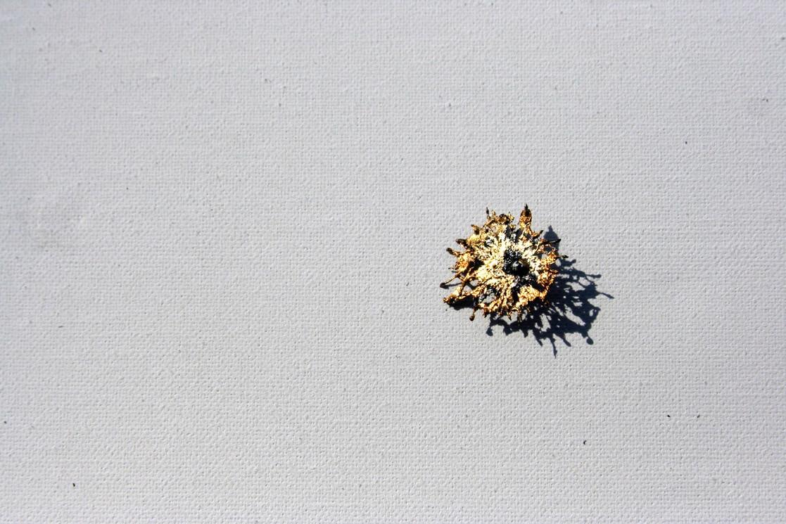 FloraFerrum, 철화, 2018