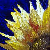 sunflower_s.jpg