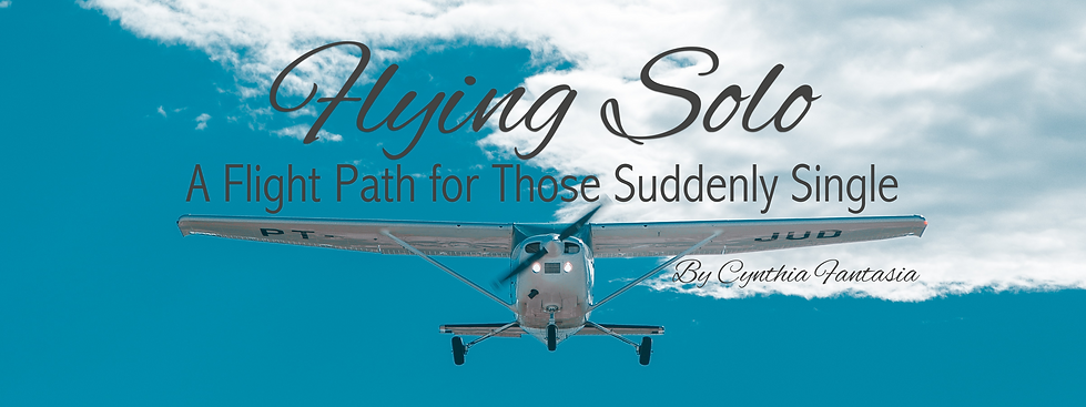 2020 05 Flying Solo banner-001.png
