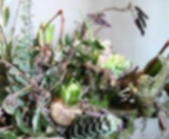 Detail lentestuk hyacint.jpg
