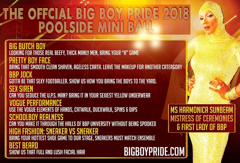 The Official Big Boy Pride Poolside Mini Ball