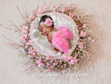 Best San Diego Newborn Photographer: Honored as One of San Diego's Top Newborn Photographers