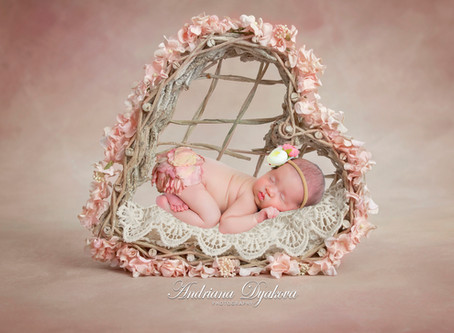Your Sweet and Safe Newborn Session