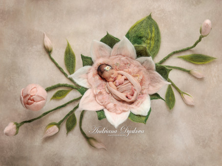 Best San Diego & Orange County Newborn Photographer: 5 Occasions To Hire A Professional Photographer