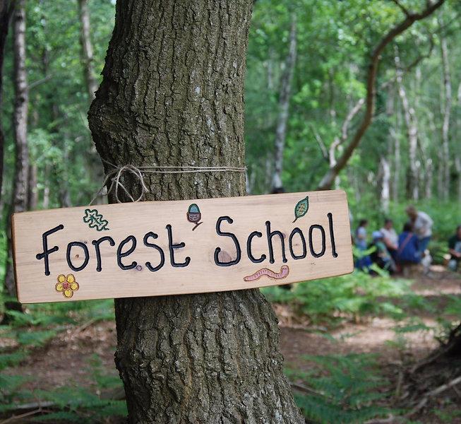 forest school_edited.jpg