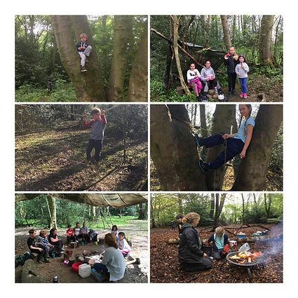 forest-school-1.jpg