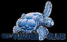 TC Logo Blue Gmail-01.png