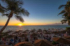 Turtle Club Sunset.jpg