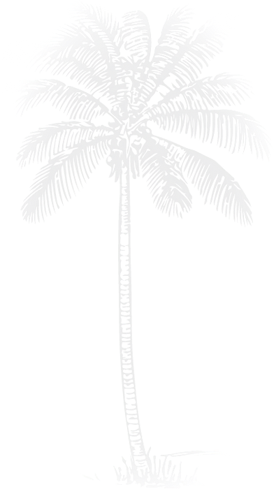palm%2520black_edited_edited.png