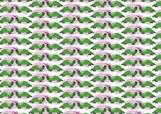 פטרן זוג צבים מאוהבים
