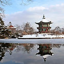 winter-south-korea.jpg