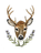 2-deer.png