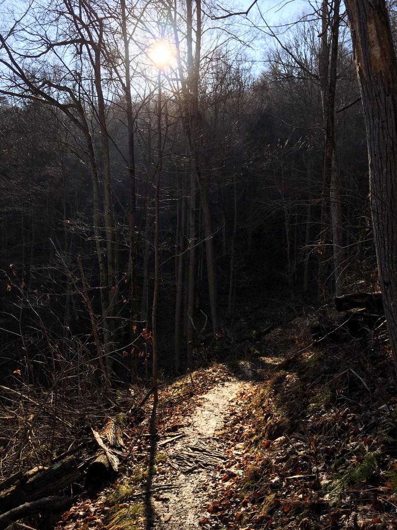 Que trail shadows