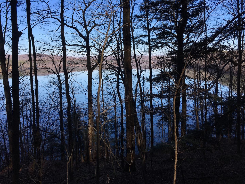 Que Trail lake view