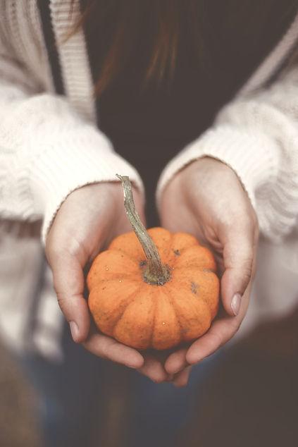 a%20Pumpkin%20in%20hand_edited.jpg
