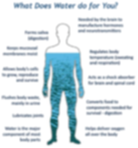 Drinking water benefits singapore, why water is good for you singapore, water health benefits singapore