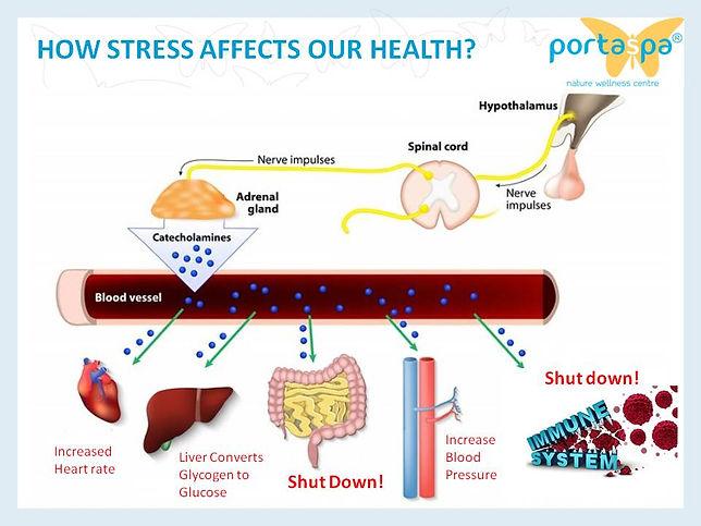 stress management singapore, anxiety singapore, stress therapy singapore, stress relief singapore, relieve stress singapore, cure stress singapore