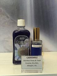 1. Camomile.jpg