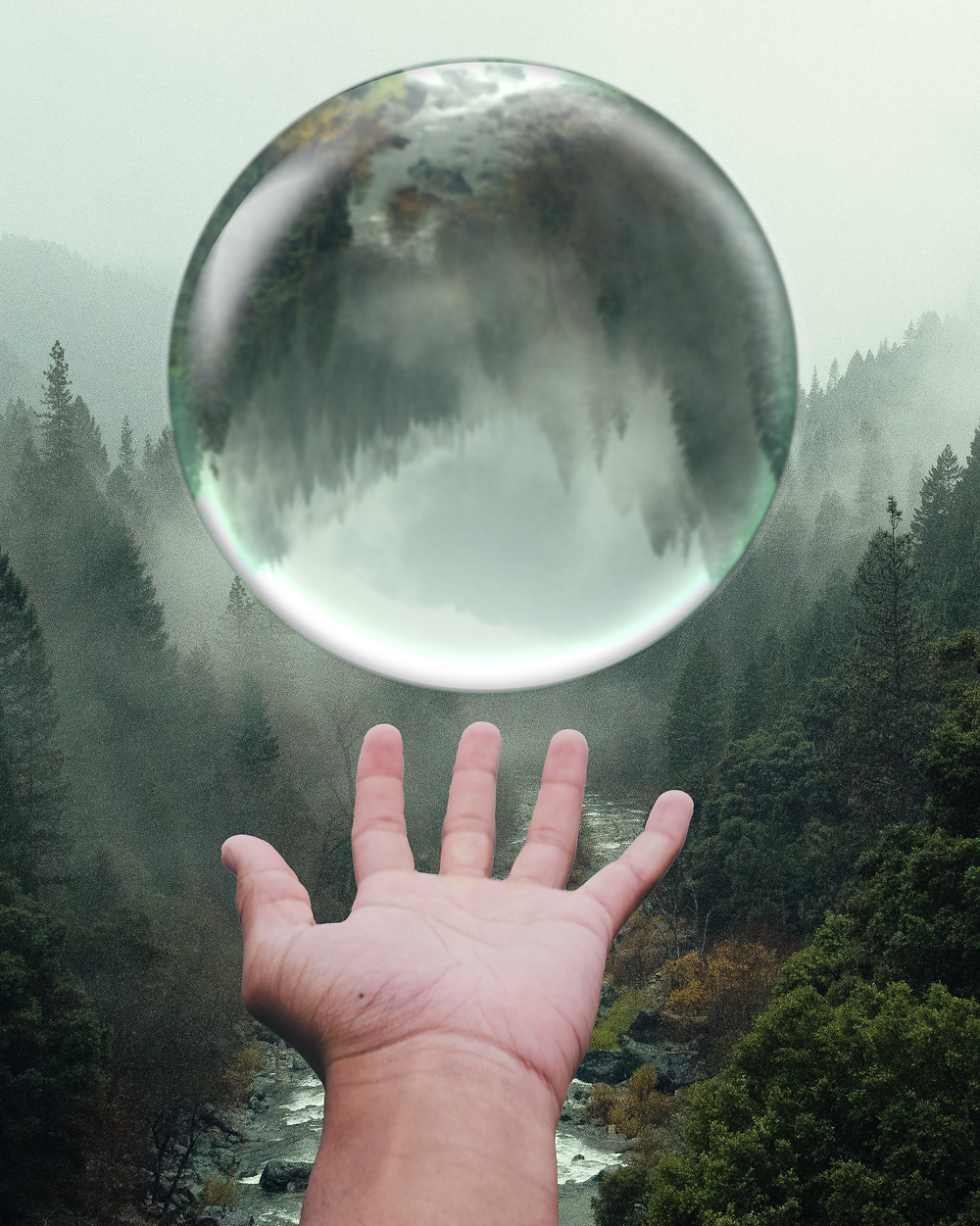 A crystal ball reflects the image of a foggy forest with a stream while hovering above an outstretched hand
