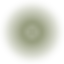 Symbol_Altstadt-Hypnose_RGB-olive_gross.