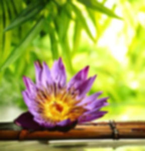 liang-zhang-spa-still-life-with-lotus-float-on-water-bamboo-background.jpg