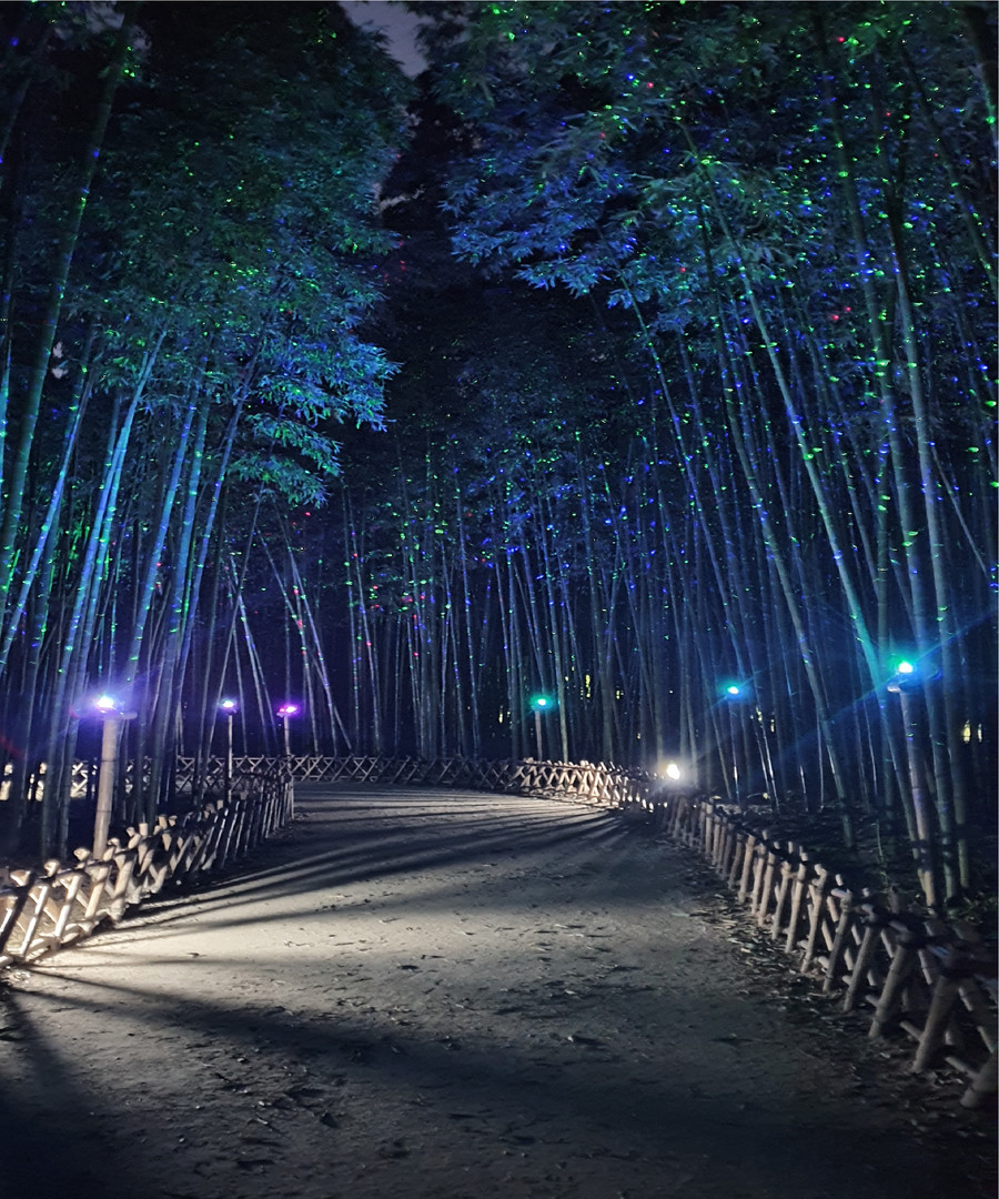 Milky Way Path at Taehwagang Bamboo Fore