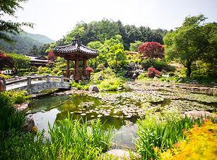3511003201705001k_The Garden of Morningc