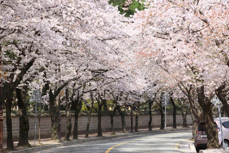 Daereungwon Park.jpg