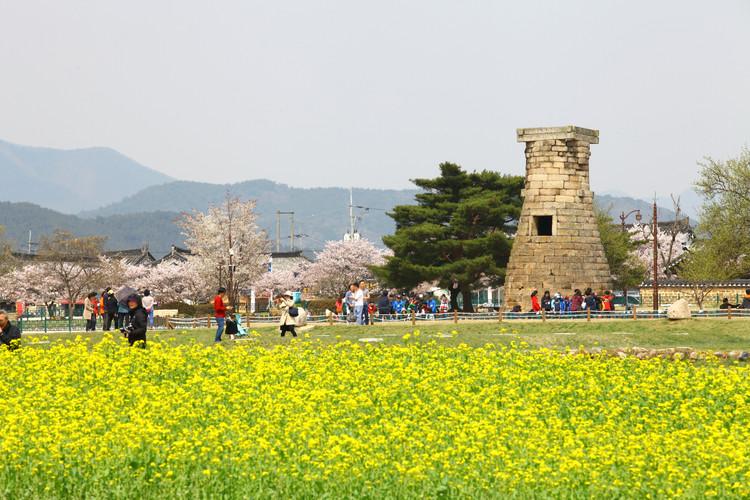 Cheomseongdae 2.jpg
