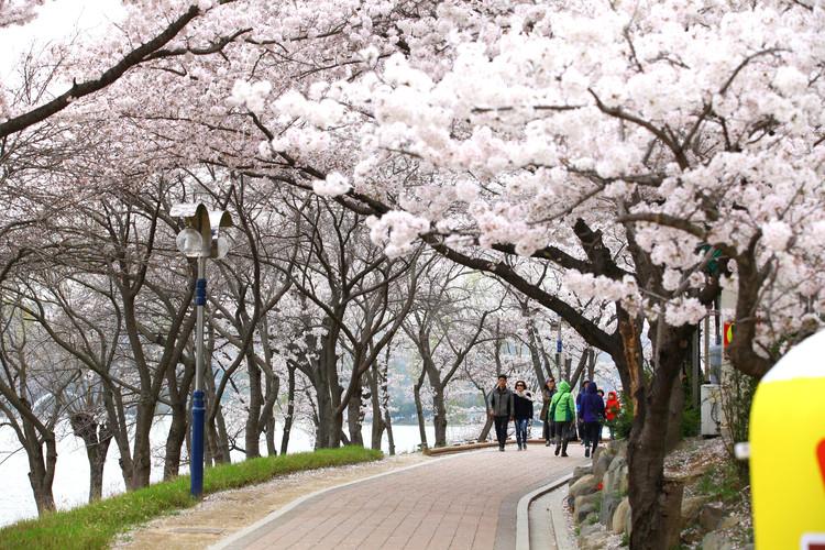 Bomun Lake.jpg