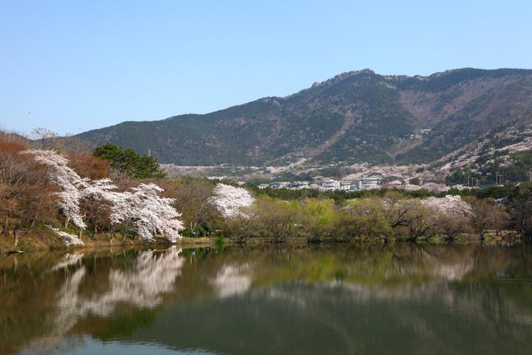 Jinhae NFRDI Environment Eco-Park.jpg