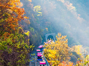 3820147201900063m_Gangchon Rail Park.jpg