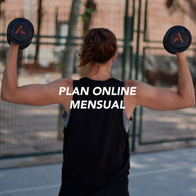 Plan Online Mensual