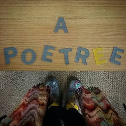 A Poetree Growing in the Library