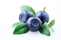 Bilberries-with-leaves-153547713_2122x14