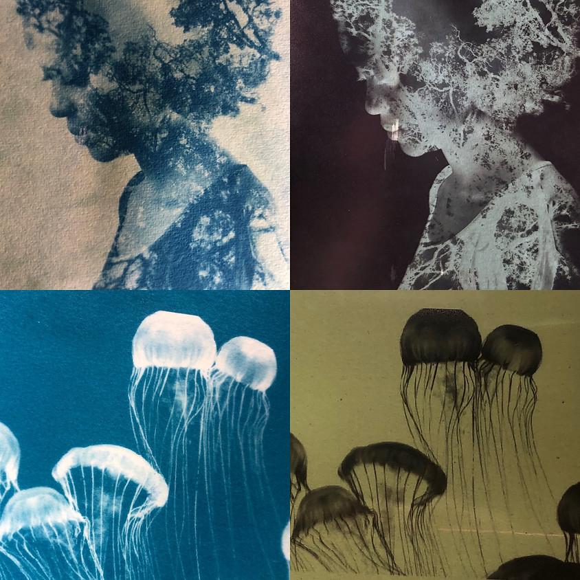 Cyanotype Print Workshop