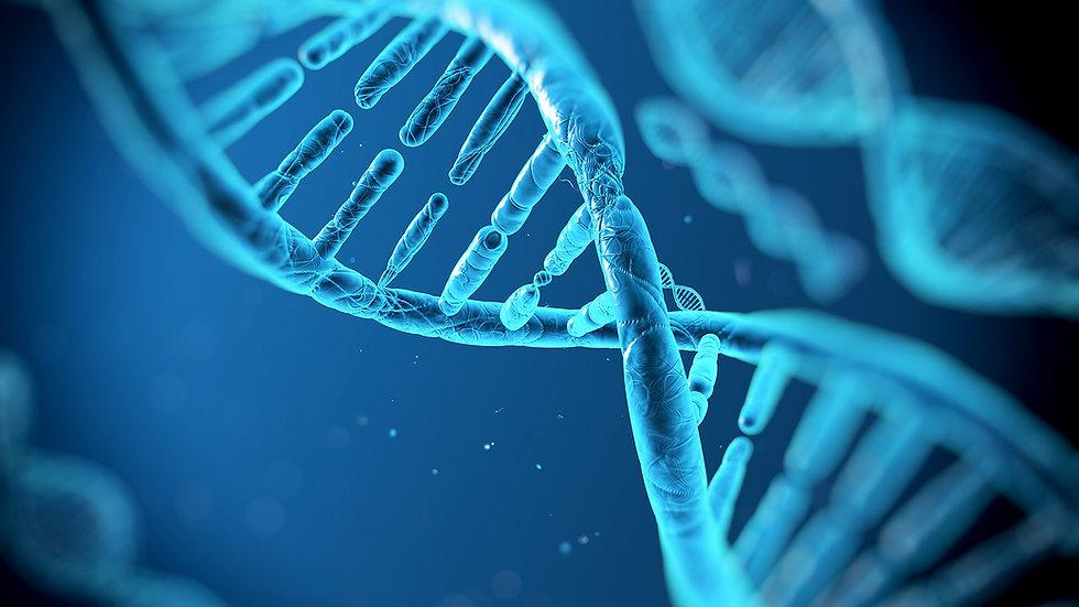 DNA IŞIKLARI REİKİSİ (1 Uyumlama)