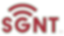 5c3b5e420817335976645a0c_sgnt-logo-p-130