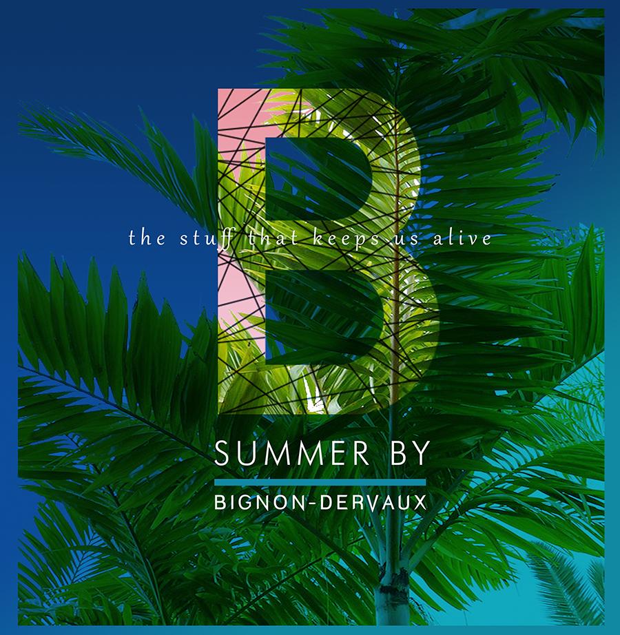 Summer pour Bignon