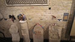 expo des ecorché salle des tombes